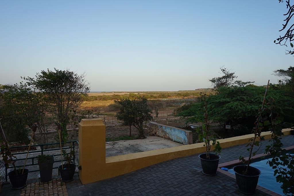 Wijngaard van Curacao