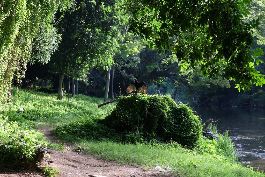 Havana park